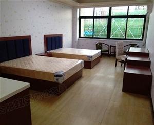 安徽滬浦醫藥賓館家具